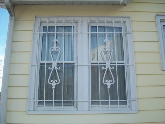 Window guard and grates